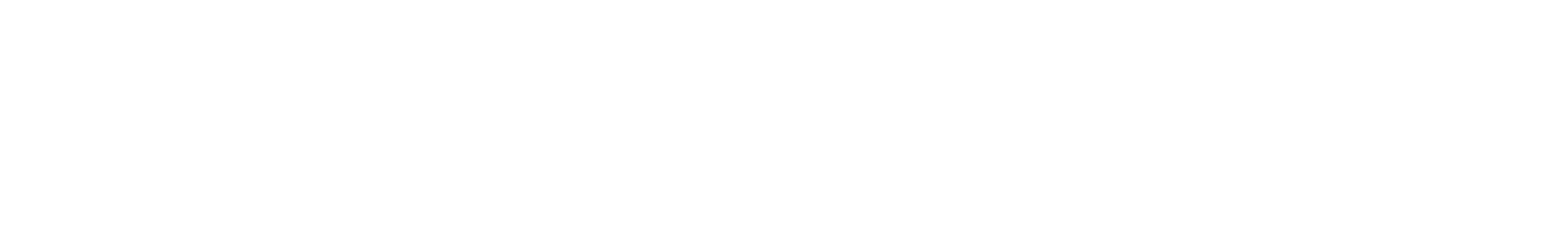 Logo WHITE (png)